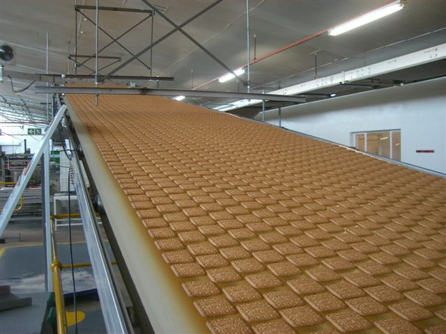 Cooling Conveyor (1)