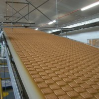 Cooling-Conveyor-11